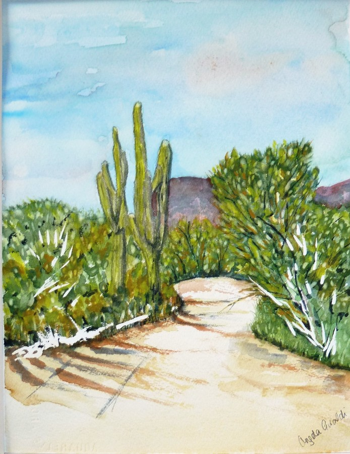 """Arizona Hike"" by Angela Giraldi"