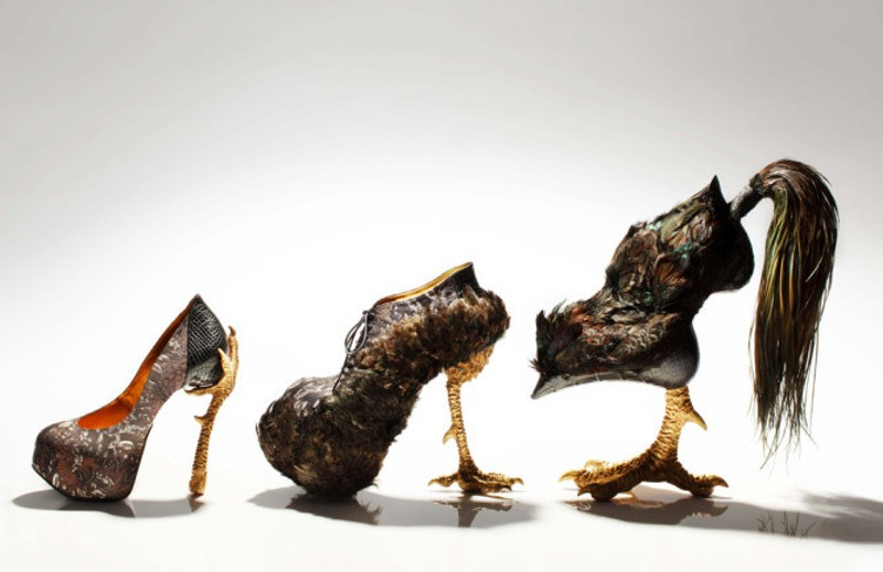 "Example of ""Agricouture"": Rooster Shoe"