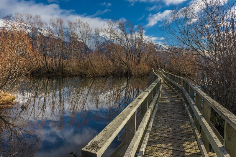 """A Bridge to Nowhere, South Island of New Zealand"" by William Toti"